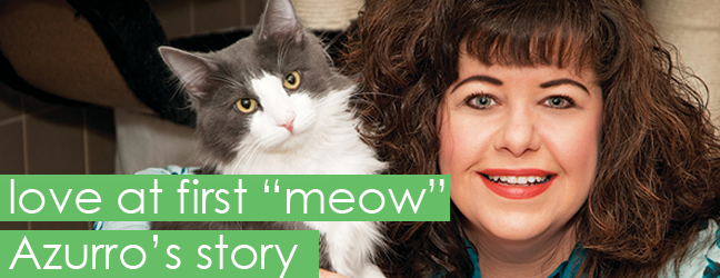 "Love at First ""Meow"", Author Carol Griglione with her first cat, Azzuro"