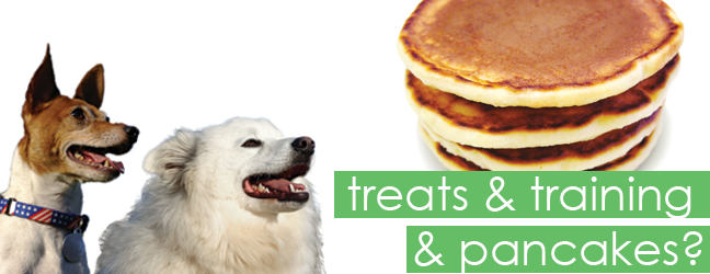 Dog bored with treats? Try Pancakes!